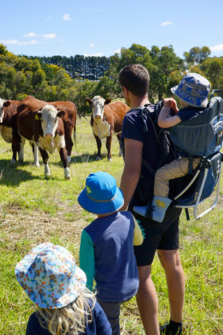 Image of man with boy in Panda toddler carrier, looking at cows and holding the hands of two other children