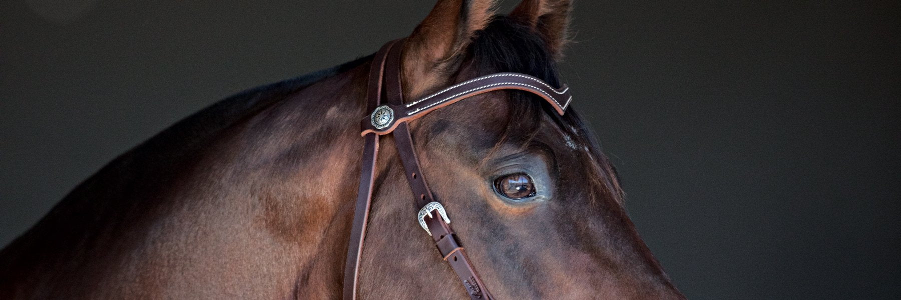 Sure Fit Bridles
