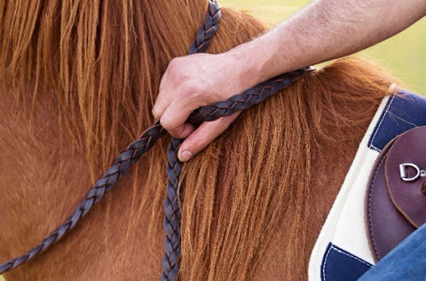Leather and Rope Reins - SHOP NOW