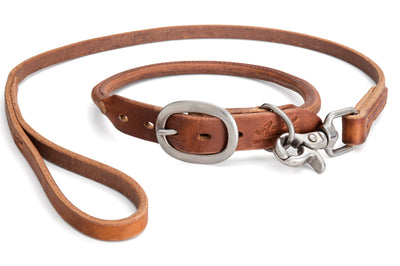 Angus Barrett Rolled Leather Dog Collar in Brown with matching lead