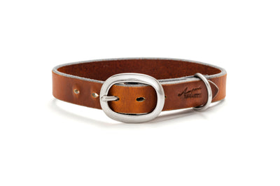Angus Barrett Working Dog Collar with Stainless steel hardware- 25mm wide