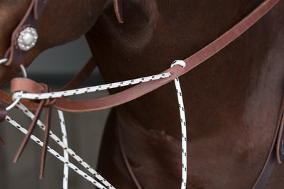 German Martingale Reins