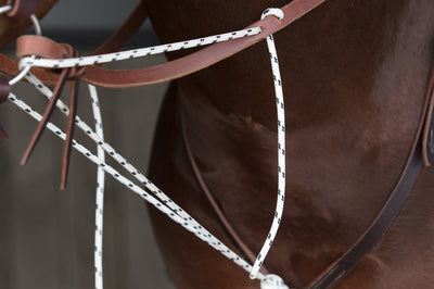 Complete German Martingale
