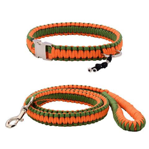 Orange Frog Collar & Leash
