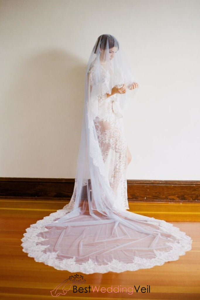 1t-tulle-with-lace-wedding-bridal-veil-cathedral-length