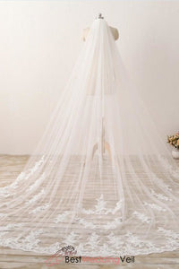 3m-long-embroidered-lace-cathedral-veil-for-wedding