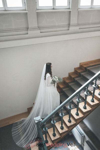 Classic Cathedral Long Tulle Bridal Veil Cut Edge Wedding