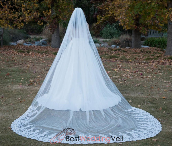Soft Tulle White Wedding Veil Cathedral Partial Lace Applique Trim