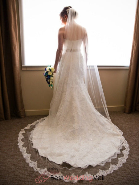 French Alencon Lace Tulle Wedding Veil Cathedral Length