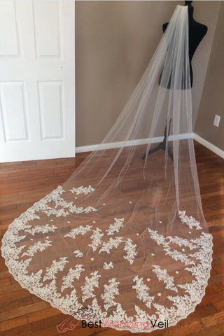 applique-lace-over-tulle-wedding-veils-with-comb-attached