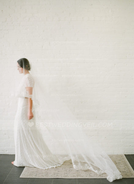 appliqued-lace-trim-ivory-wedding-veil-cathedral-2