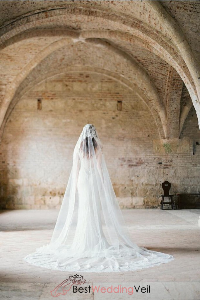 beautiful-lace-church-wedding-dress-veil-cathedral
