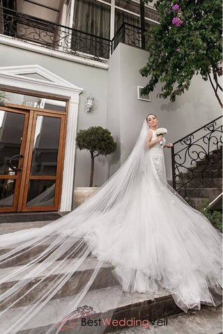 elegant-long-single-tier-tulle-simple-bride-veils-with-comb