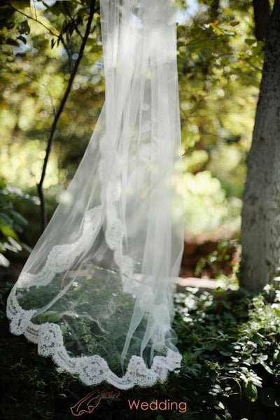 Alencon Lace Edged Cathedral Length Tulle Bridal Veil Wedding