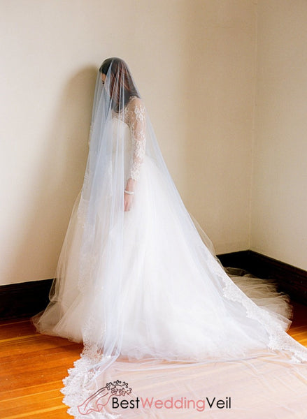 1T Tulle With Lace Wedding Bridal Veil Cathedral Length