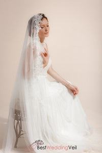 ivory-dotted-wedding-veil-long-cathedral-one-tier-lace-appliqued-edge