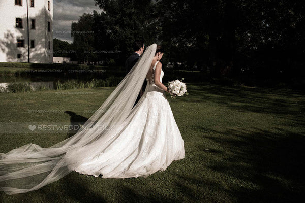 one-layer-hard-tulle-super-long-wedding-veil-with-comb-2