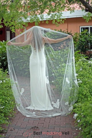 unique-style-one-layer-tulle-long-wedding-veil-with-appliqued-lace