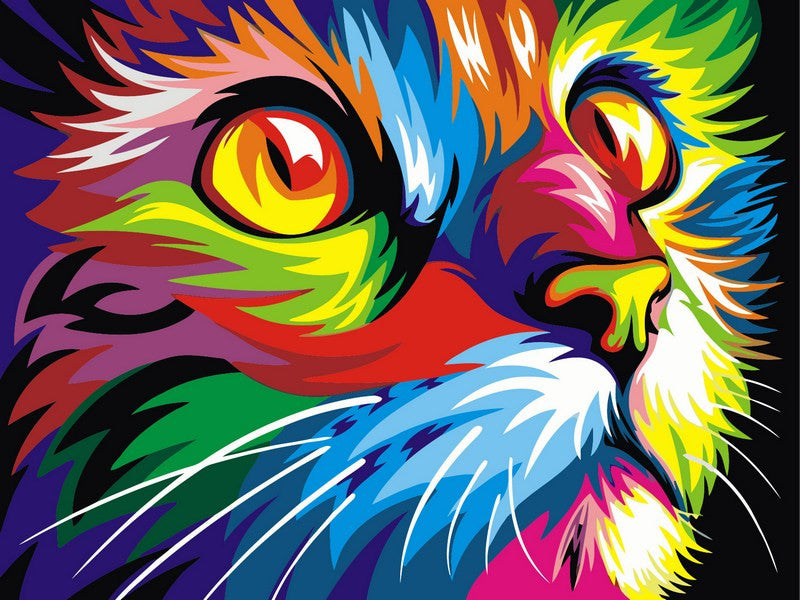 VanGo Painting By Numbers - Colourful Cat (16''x20'' / 40x50cm)