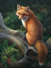 "VanGo Painting By Numbers - The Brown Fox (16""x20"" / 40x50cm)"