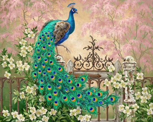 VanGo Painting By Numbers - Lovely Peacock (16