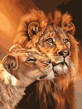 "VanGo Painting By Numbers - Lion Kings (16""x20"" / 40x50cm)"