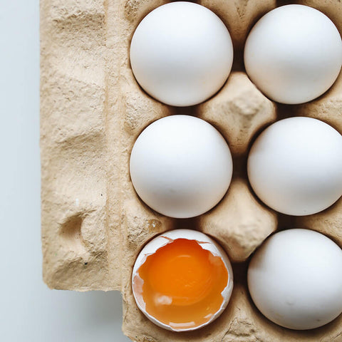 egg quality and safety testing