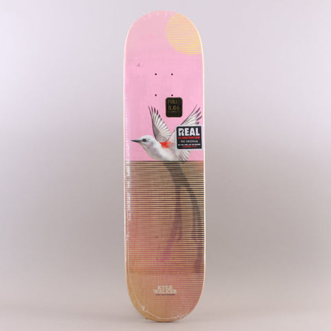 "Real - Kyle Walker Segemnt 8,06"" deck"