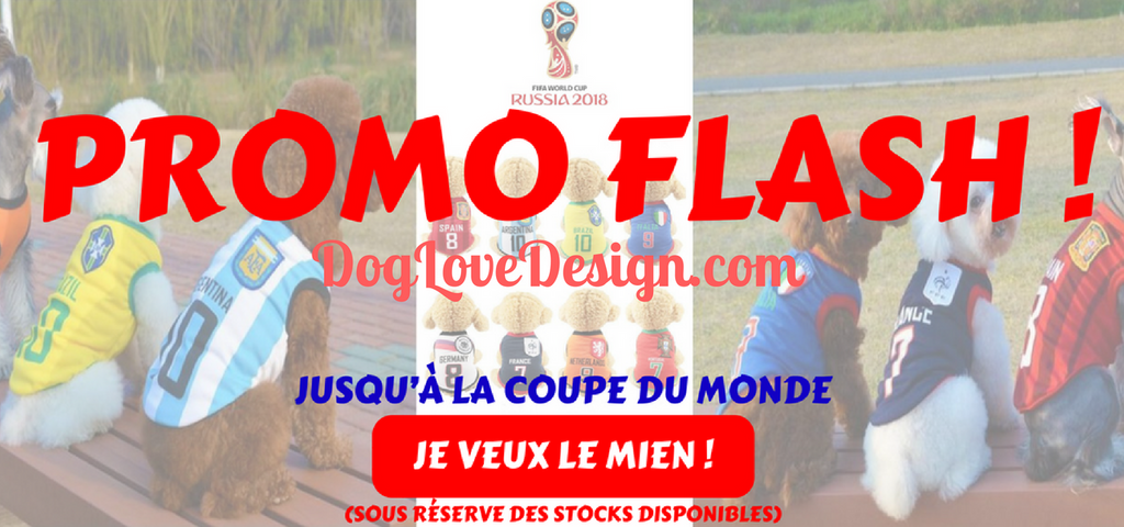 "Nouvelle Collection ""Coupe du Monde 2018"""