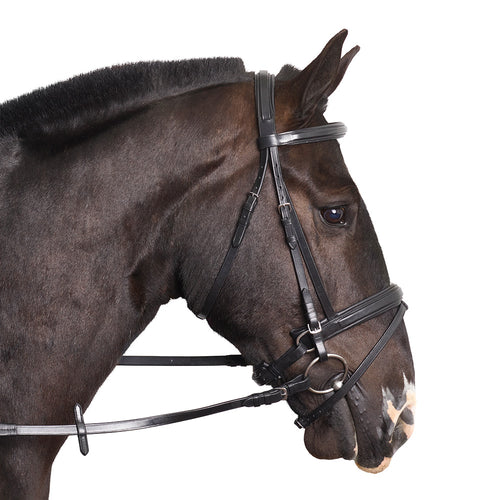 The Kensington Bridle - MissDarcy