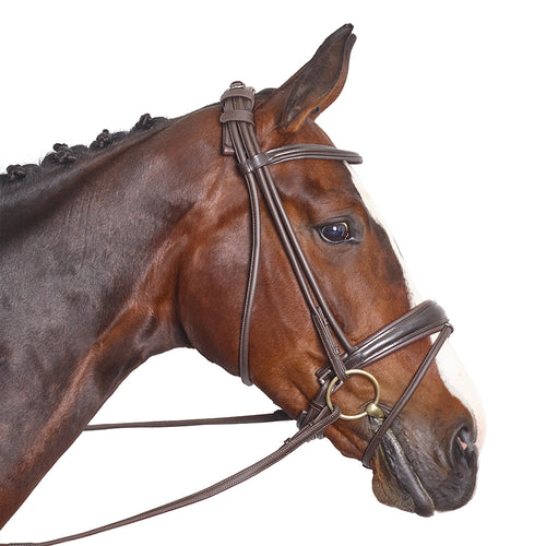 The Westminster Bridle - MissDarcy