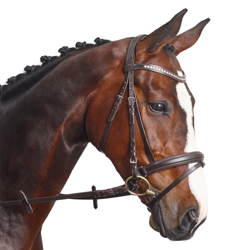 Classic Crystal Curve Browband - MissDarcy