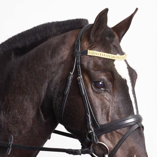 Colorado Gold Crystal Browband - MissDarcy
