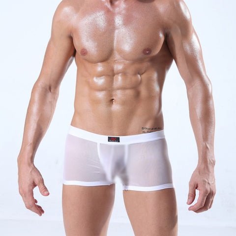 Transparent See Through Boxers Shorts