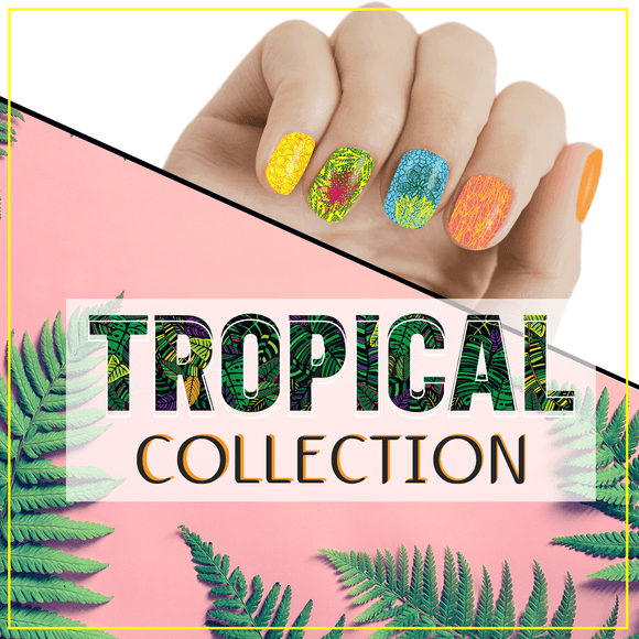 MoYou Nail Fashion Tropical Collection