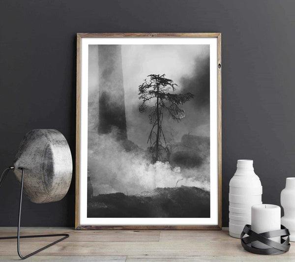 Forest fire - Monochrome Personliga posters, art prints Pansarhiertadesign