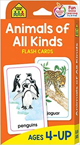 SZ - Flash Cards - Animals of All Kinds