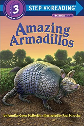 STEP 3 - Amazing Armadillos