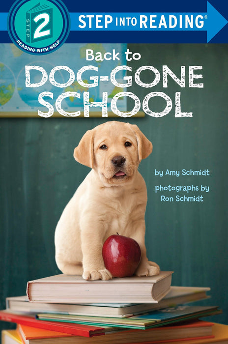 STEP 2 - Back to Dog - Gone School