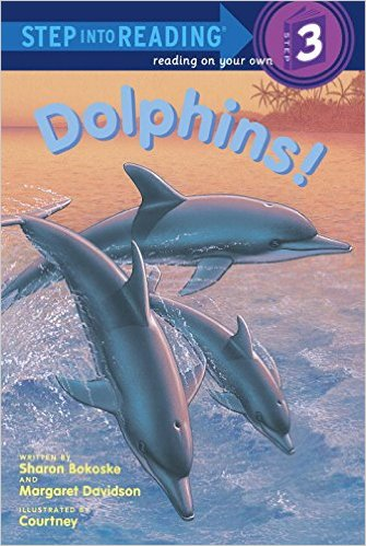 STEP 3 - Dolphins