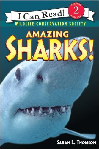 ICR 2 - Amazing Sharks!