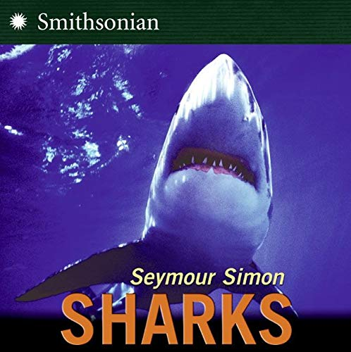 Simon Sharks