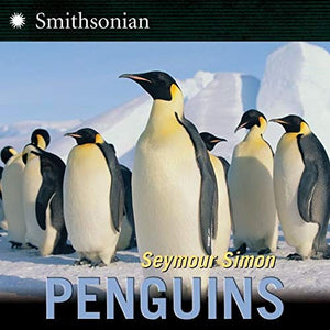 Simon Penguins