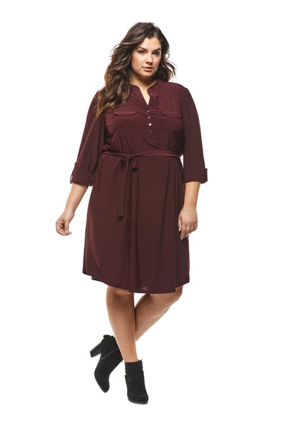 Vanessa Plus Size Dress