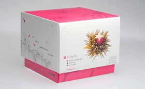 teaposy butterfly blooming tea box