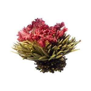 Teaposy red song blooming tea, with silver needle white tea and carnation flower