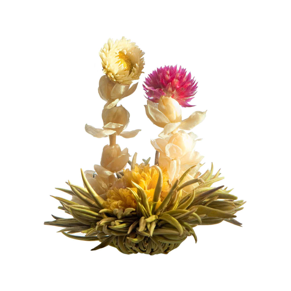 teaposy harmony blooming tea, with jasmine flower, caledula, amaranth and chrysanthemum