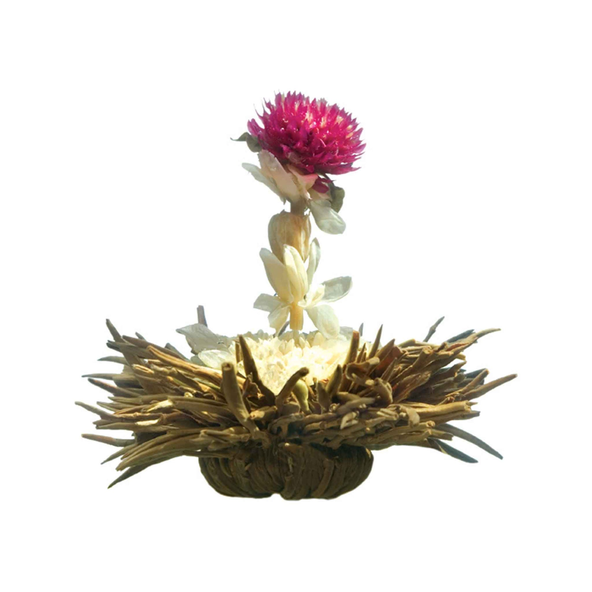 Teaposy crown-me blossom with silver needle white tea, chrysanthemum, jasmine and amaranth