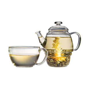 Teaposy falling water blooming tea in the charme glass teapot with tea cup