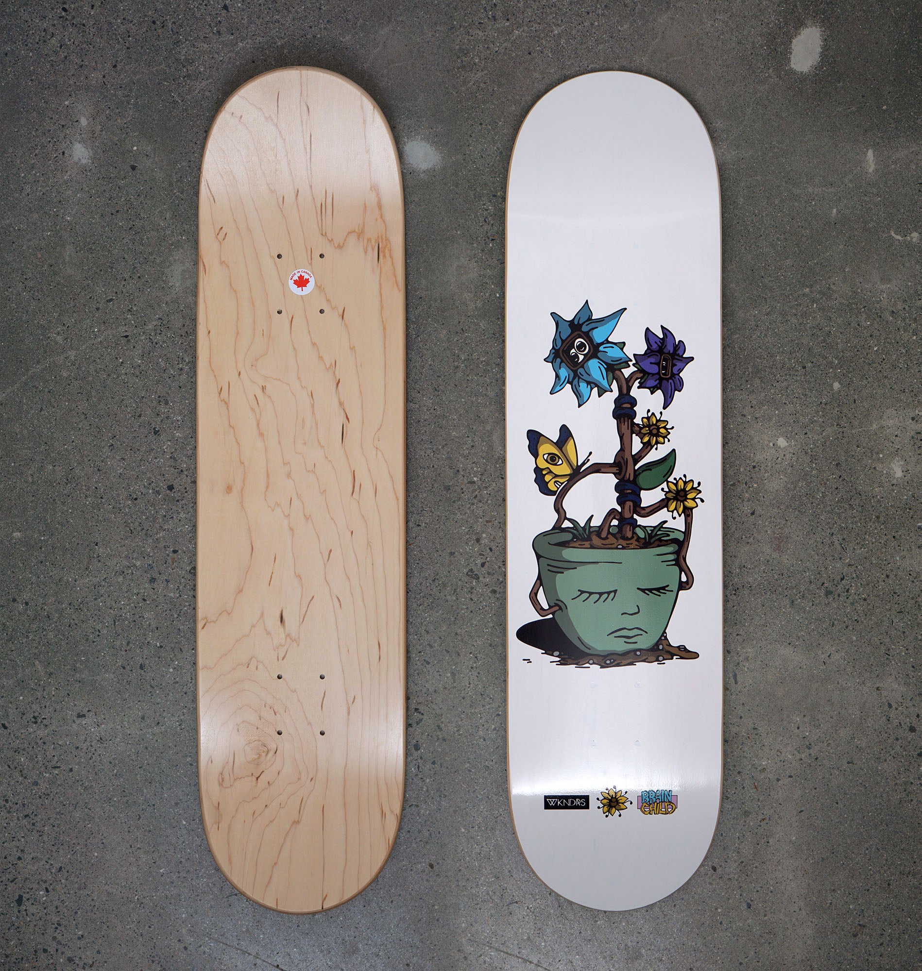 "Brainchild x WKNDRS Deck - Chris Haslam (8.0"")"